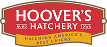 hoovershatchery.com