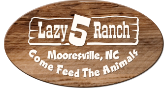 lazy5ranch.com