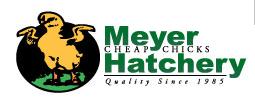meyerhatchery.com